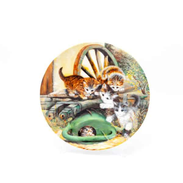 Котята и лейка