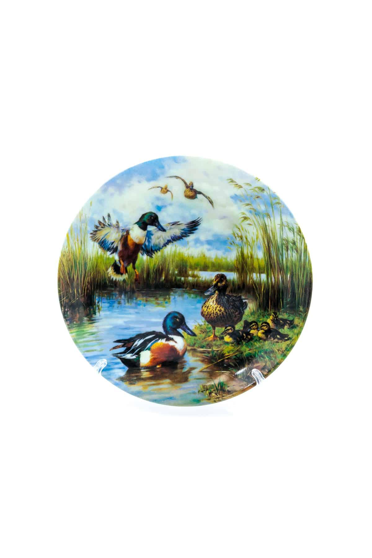 farforovaya tarelka utki na vode
